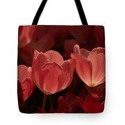Burgundy Tulips Tote Bag