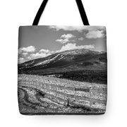 Burke Behind The Fence Tote Bag