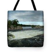 Burleigh Falls Tote Bag
