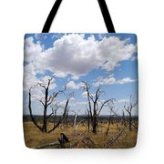 Burned Trees On Colorado Plateau Tote Bag