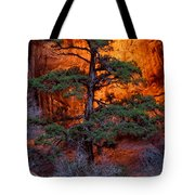 Burning Bush Tote Bag