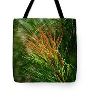 Burnished Pine Tote Bag