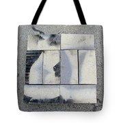 Burnt Brick 1 Tote Bag