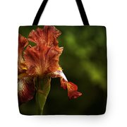 Burnt Orange Iris Tote Bag