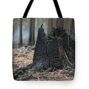 Burnt Tree Trunk Tote Bag