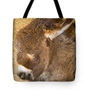 Burro Foal Tote Bag