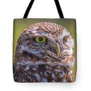Burrowing Owl 001 Tote Bag