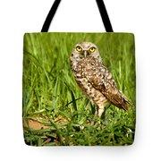 Burrowing Owl At It's Burrow Tote Bag