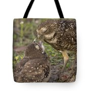 Burrowing Owl Feeding It's Chick Photo Tote Bag