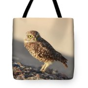 Burrowing Owl II Tote Bag