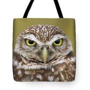 Burrowing Owl, Kaninchenkauz Tote Bag