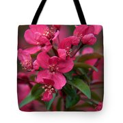 Burst Of Fire Tote Bag