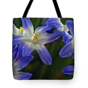 Burst Of Glory Tote Bag
