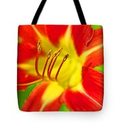 Bursting Bold Tote Bag