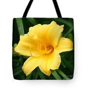 Bursting Lily  Tote Bag