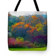 Bursting With Color 1 Tote Bag