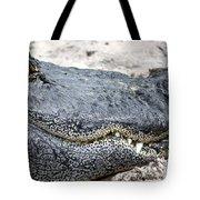 Busch Gator Tote Bag