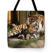 Busch Tiger Tote Bag