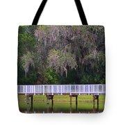 Buschman Park Walkway Tote Bag