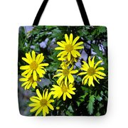 Bush Daisy  Tote Bag