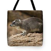 Bush Hyrax 2 Tote Bag