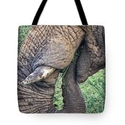 Bush Treat Tote Bag