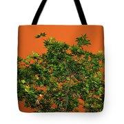 Bushfire Skies Tote Bag