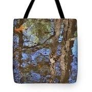 Reflection In Bushkill Falls  Tote Bag