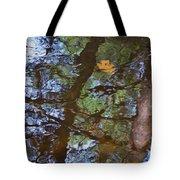 Second  Reflection In Bushkill Falls  Tote Bag