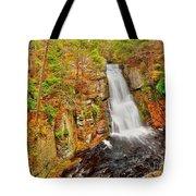 Bushkill Falls Pa Tote Bag