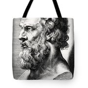 Bust Of Plato  Tote Bag