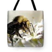 Busy As A Bee Tote Bag