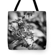Busy Bee - Bw Tote Bag