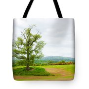 But Only God Can Make A Tree Tote Bag by Semmick Photo