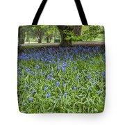 Bute Park Bluebells Tote Bag