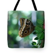 Buterfly 4 Tote Bag