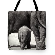 Butt Butt Butt Tote Bag by Joan Carroll
