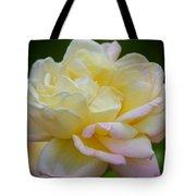Buttercream Blush Tote Bag