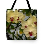 Buttercream Orchids Tote Bag