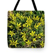 Buttercups In Cappadocia-turkey Tote Bag