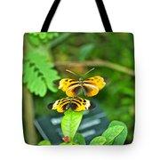 Butterflies Gentle Courtship  3 Panel Composite Tote Bag