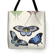 Butterflies I Tote Bag