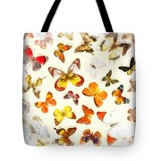 Butterflies Square Tote Bag