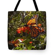 Butterflies Three Tote Bag