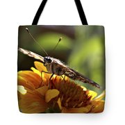 Butterfly 004 Tote Bag