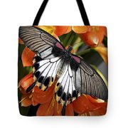 Butterfly 006 Tote Bag