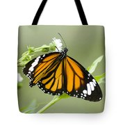Butterfly 009 Tote Bag