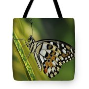 Butterfly 010 Tote Bag