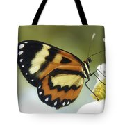 Butterfly 013 Tote Bag