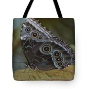 Butterfly 015 Tote Bag